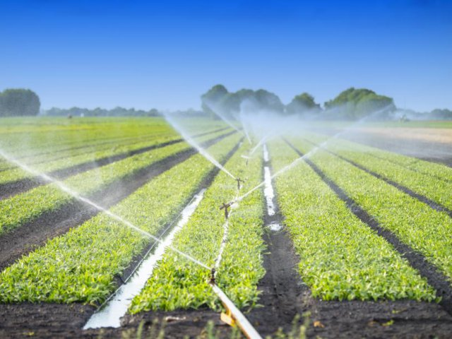 agriculture-waste-water-adobestock_86772407